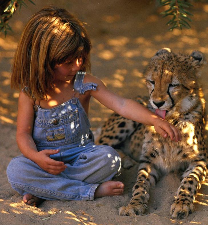 Juega con animales salvajes